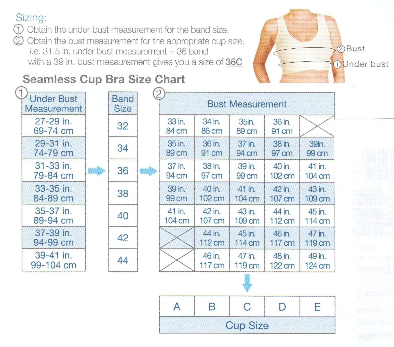 Locate Your Cur Bra Size In The Chart Below To Find Sister Down